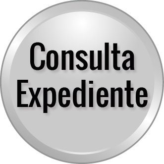 logo cons expediente.png